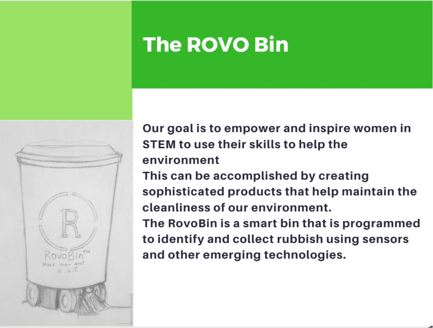 A sample of the rovo bin presentation