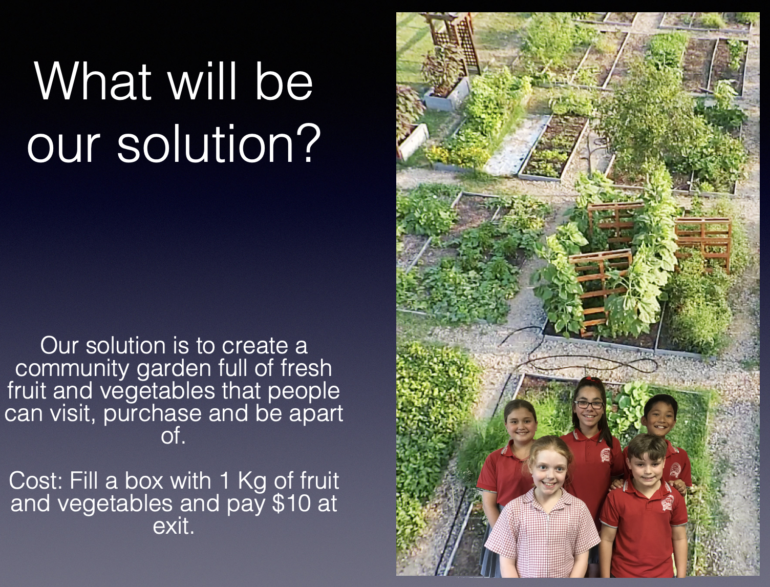 Our solution is a community garden in the Birkdale South area. Fill a box with 1kg of fruit and vegetables, and pay $10 at the exit.