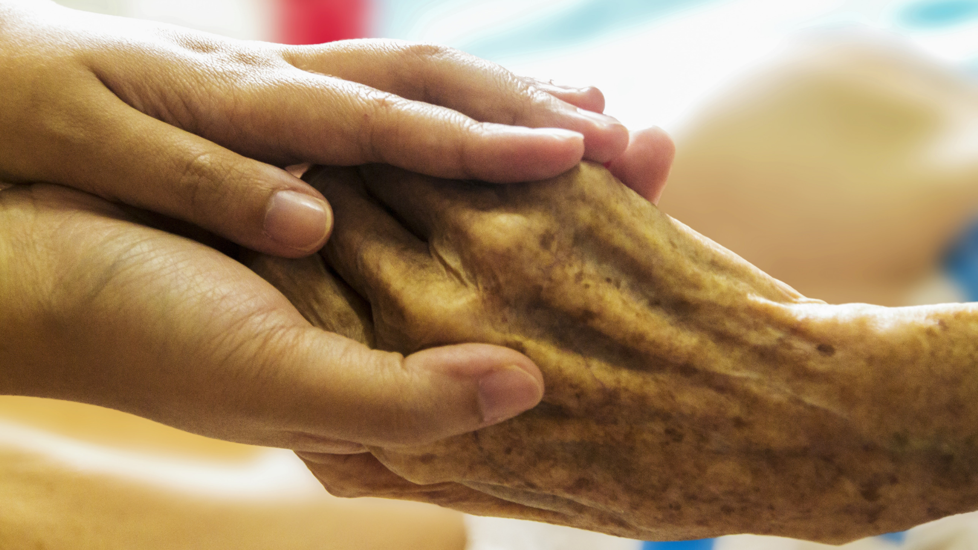 a young person's hands holding an elderly person's hand